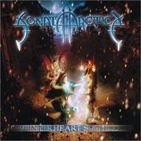 Sonata Arctica: Winterheart's guild