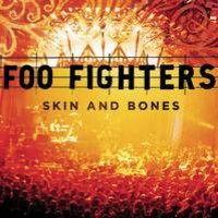 Foo Fighters : Skin and bones