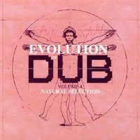 Gibbs, Joe: Evolution of Dub - Vol. 4 - Natural Selection