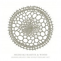 Medeski, Martin & Wood: Radiolarians: the evolutionary set -5cd+dvd+2LP