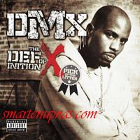 DMX: The definition of X