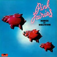 Pink Fairies: Kings of oblivion