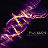 Simon, Paul : So beautiful or so what