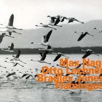 Nagl, Max: Flamingos