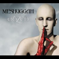 Meshuggah : Obzen