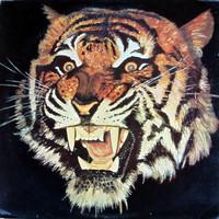 Tiger: Tiger