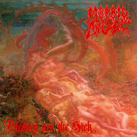 Morbid Angel : Blessed are the sick -Limited edition