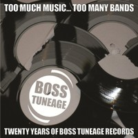 V/A: Too much music, too many bands: 20 years of boss tuneage