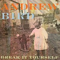 Bird, Andrew : Break It Yourself cd+dvd