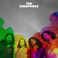 Sheepdogs : Sheepdogs