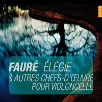 Faure, Gabriel: Elegie & Other Master Piece