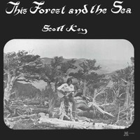 Key, Scott: This Forest And The Sea