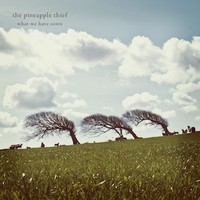 Pineapple Thief: What We Have Sown