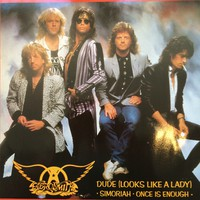 Aerosmith: Dude -Looks Like A Lady-