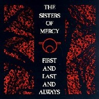 Sisters of Mercy: First and last and always