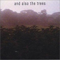 And Also The Trees: First Album