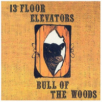 13th Floor Elevators: Bull of the woods