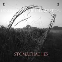 Frnkiero & The Cellabration: Stomachaches