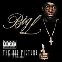 Big L: The big picture