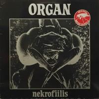 Organ : Nekrofiilis