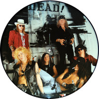 Guns N' Roses: Don't Cry - Picture Disc