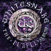 Whitesnake : The Purple Album