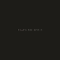 Bring Me The Horizon: That's The Spirit