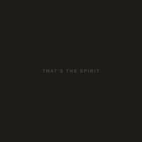 Bring Me The Horizon : That's The Spirit