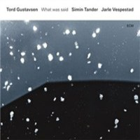 Gustavsen, Tord: What was said