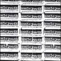 Sonic Youth: Screaming fields of sonic love