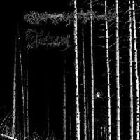 Torturium: Split