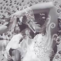 Björk: Vespertine