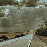 Lee Angel: Open Road