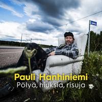 Hanhiniemi, Pauli: Pölyä, hiuksia, risuja