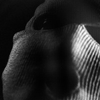 Julma H: Musta albumi