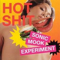 V/A: Sonic Mook Experiment Vol.3