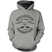 Harry Potter: Quidditch champion