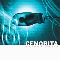 Cenobita: Metamorfosis