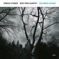 Stanko, Tomasz: December Avenue