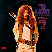 Nugent, Ted: Survival Of The Fittest / Marriage On The Rocks