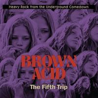 V/A: Brown Acid - Fifth Trip