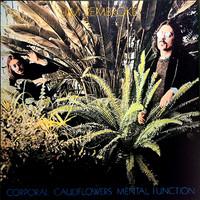 Pembroke, Jim : Corporal Cauliflowers Mental Function