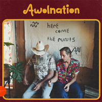 Awolnation: Here Come The Runts
