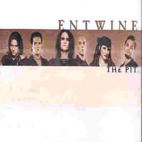 Entwine: Pit
