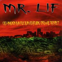 Mr Lif: Cro-Magnon