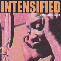 Intensified: Doghouse Bass
