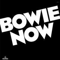 Bowie, David: Now