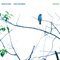 Aaltonen, Juhani: Awakening