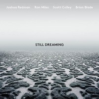 Redman, Joshua: Still Dreaming (feat. Ron Miles, Scott Colley & Brian Blade)