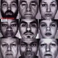 Bad Religion: Gray race